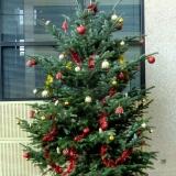 Sapin-de-noel-decoration-festive-4